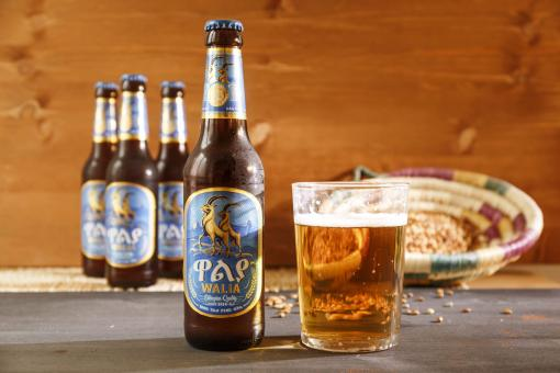 WALIA Lager Bier 5% vol. (24 x 0,33 ltr.) Karton